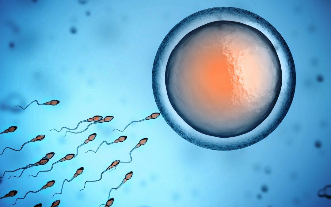 Imunomodulatorni tretman infertilnih muškaraca sa povišenim vrednostima anti-spermatozoidnih antiteIa