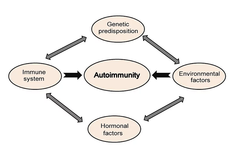 Autoimmunity as Evolutionary by Product of Adoptive Immunity and Source of Anti-tumor Immunity Failure